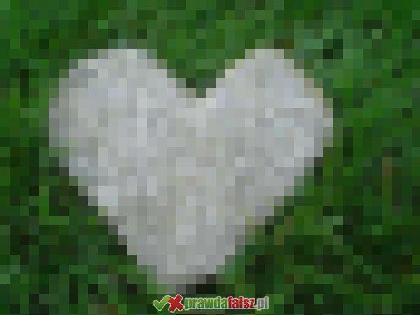 Miłość w naturze