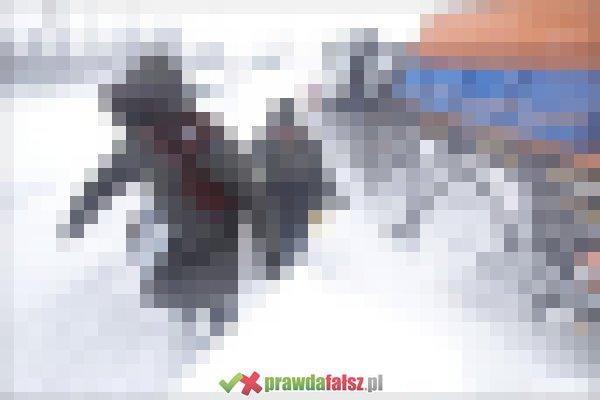Śnieżyca w Rumunii